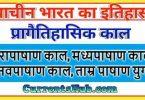 प्रागैतिहासिक काल नोट्स pdf Notes In Hindi for UPSC and PCS